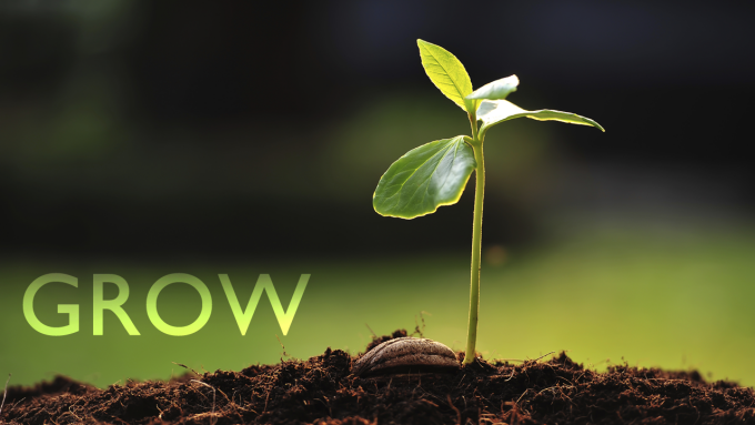 Grow: Personal Ministry